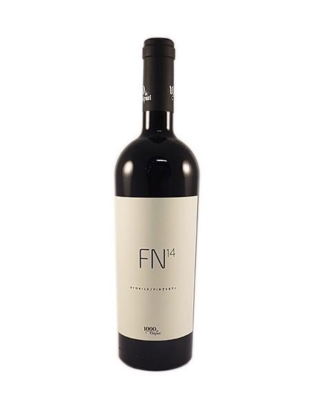 1000 de Chipuri - FN14